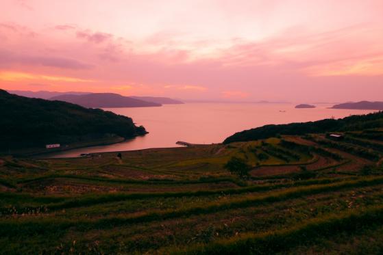 夕日の土谷棚田1