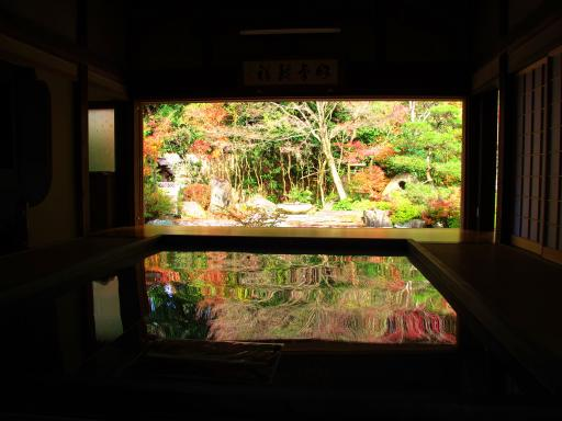 寿福寺の逆さ紅葉4