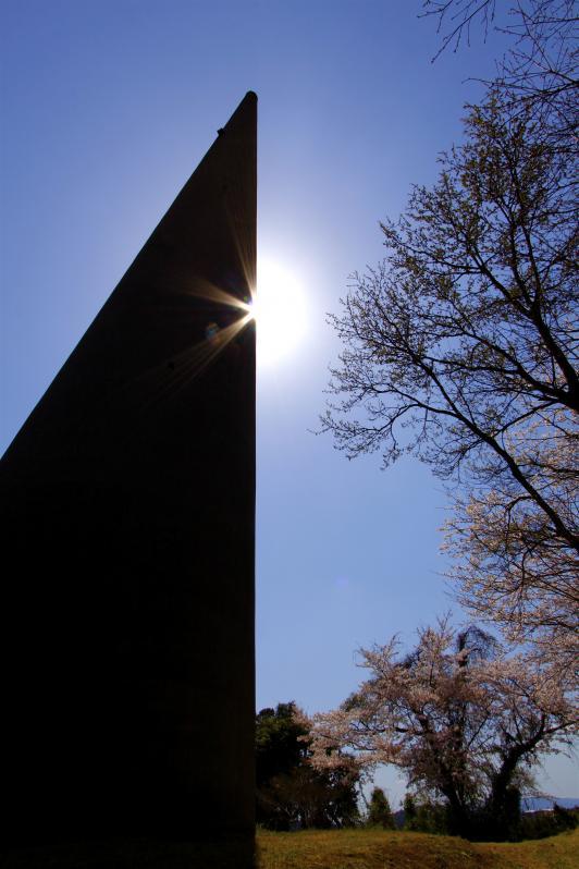針尾無線塔(桜)