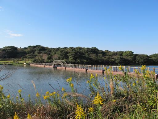 白岳公園(江迎町)