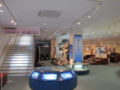 鯨賓館ミュージアム1