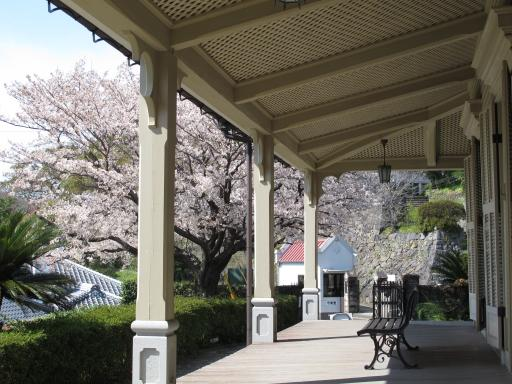 東山手十二番館の桜1