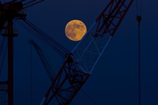 中秋の名月©SASEBO