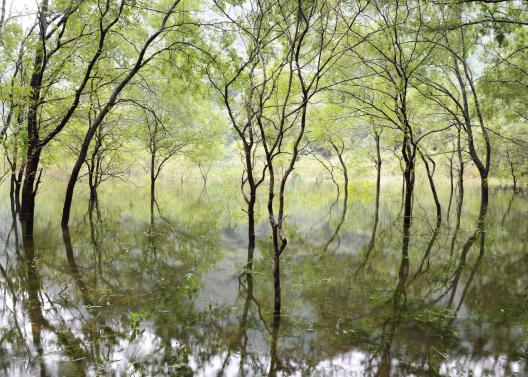 神秘の五蔵池©SASEBO