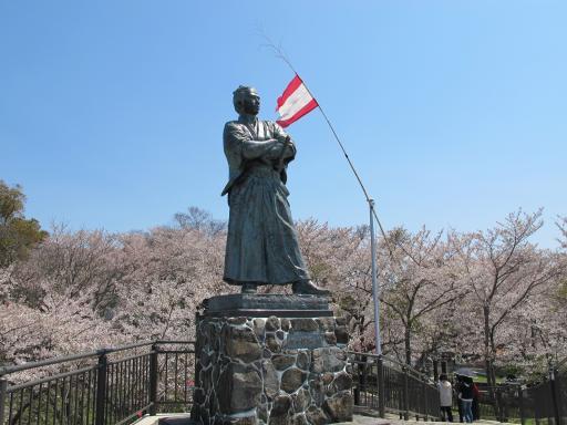 風頭公園 坂本龍馬之像(桜)