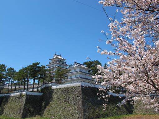 島原城と桜2