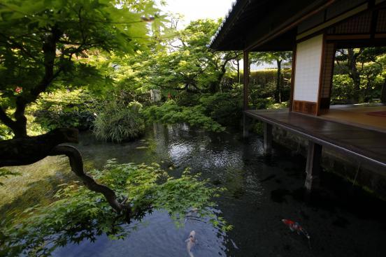 湧水庭園 四明荘3