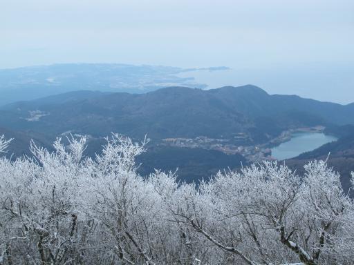 雲仙の霧氷(妙見岳)4