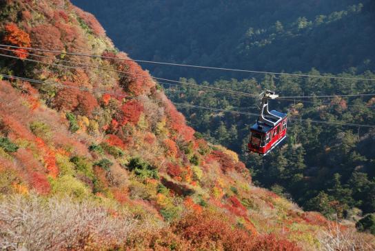 仁田峠の紅葉と雲仙ロープウェイ2