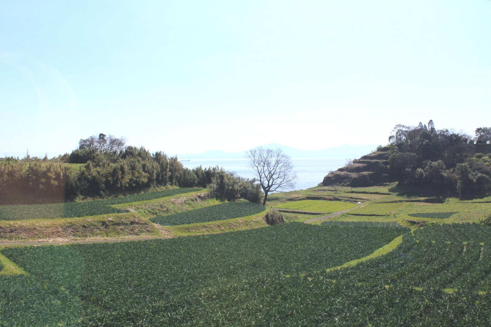 ②陸に上がり「原城跡」を歩く-0