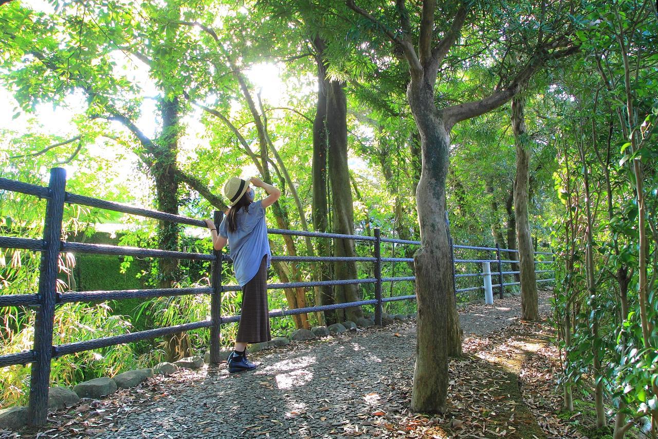 水と、光と、緑が美しい諫早自慢の散策路「高城回廊」-0
