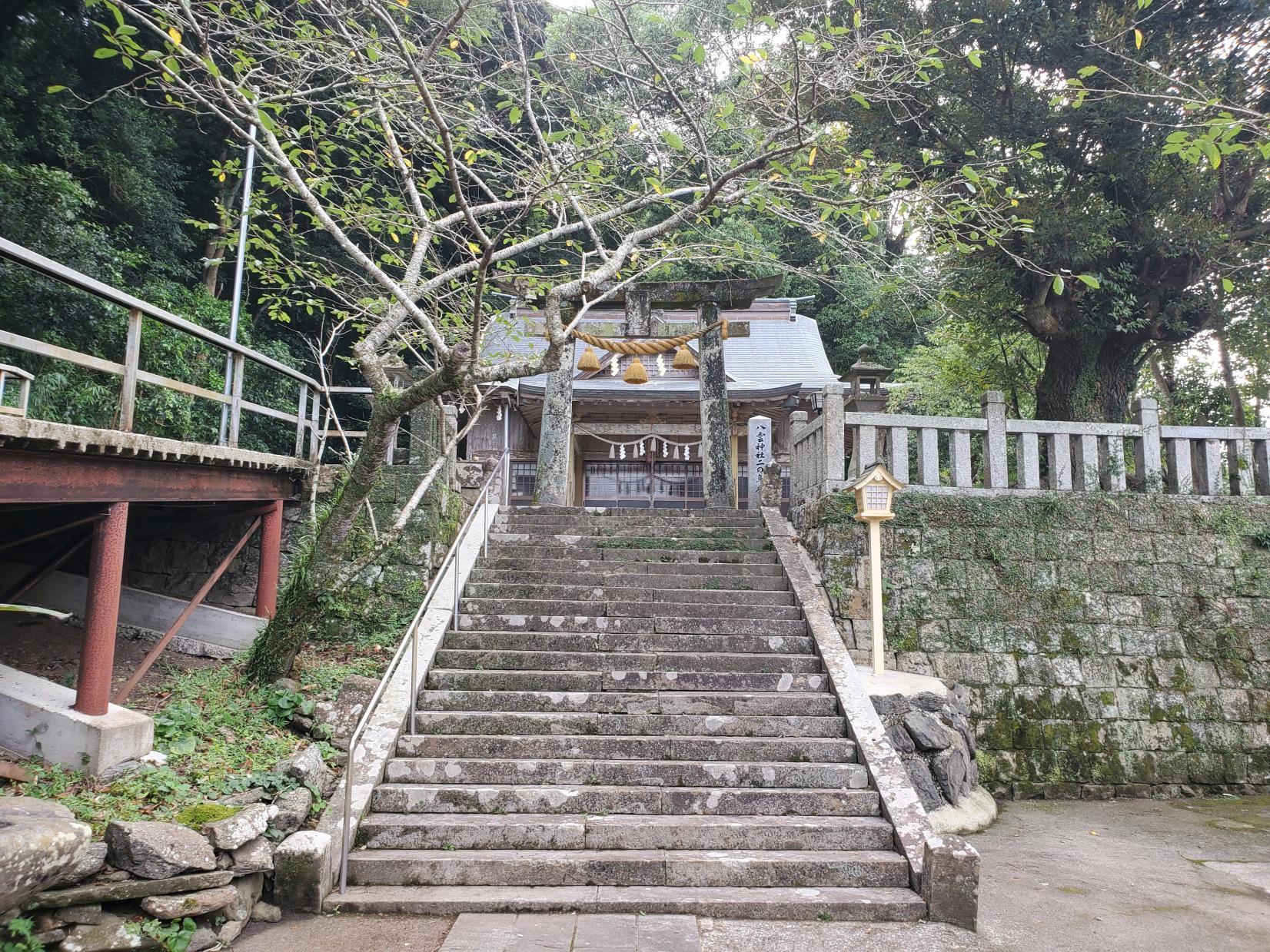 八雲神社 蓮池があったので、初夏にはキレイな花が咲くのかもしれません。-0