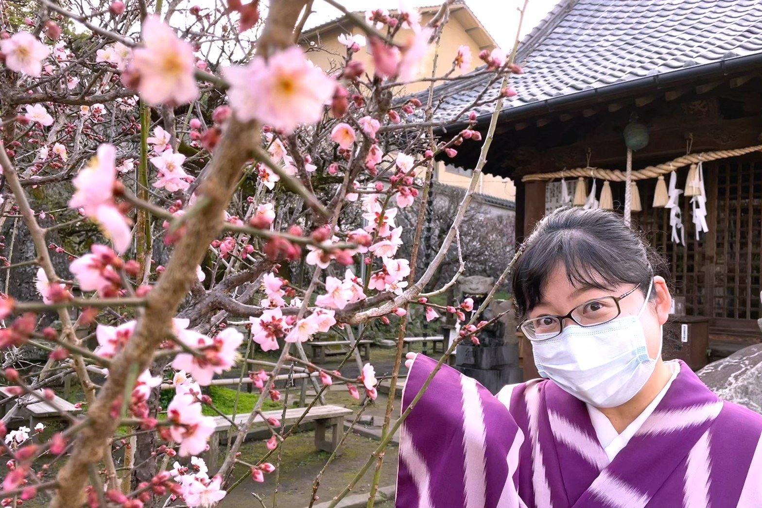 長崎市 丸山 梅園身代り天満宮の梅が見頃! 「長崎ぶらぶら節」の舞台を訪ねて-1