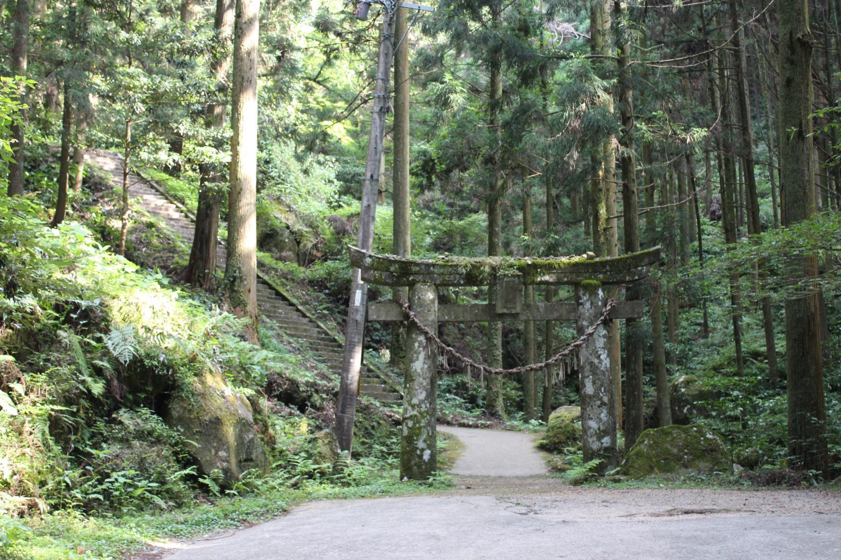 もののけ姫の世界?「岩戸神社」-1