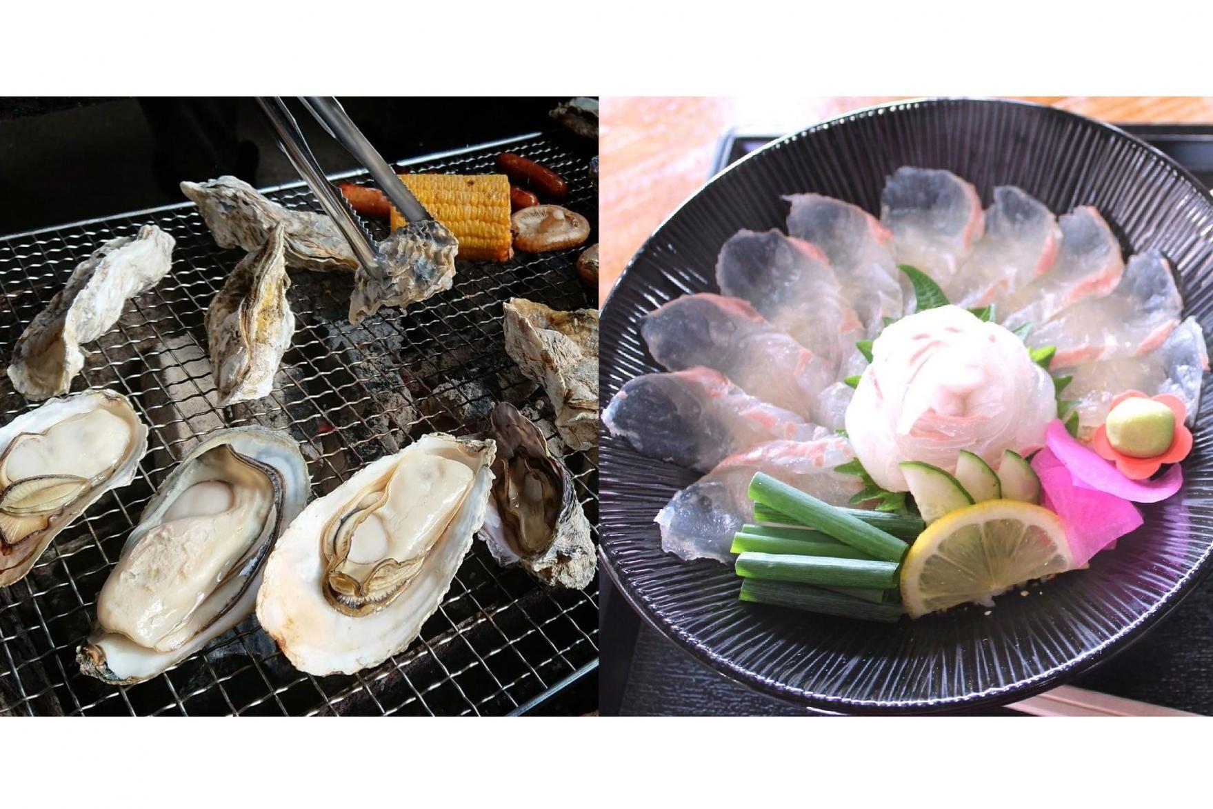 小長井ブランド牡蠣(かき)華漣(かれん)と平戸の天然ひらめ-1