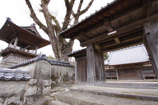 光泉寺-1