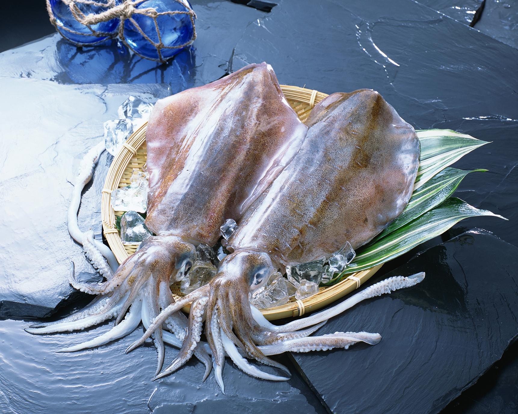 旨い肉あり魚あり! 日本屈指のグルメな島・下五島を食べ尽くす!-2