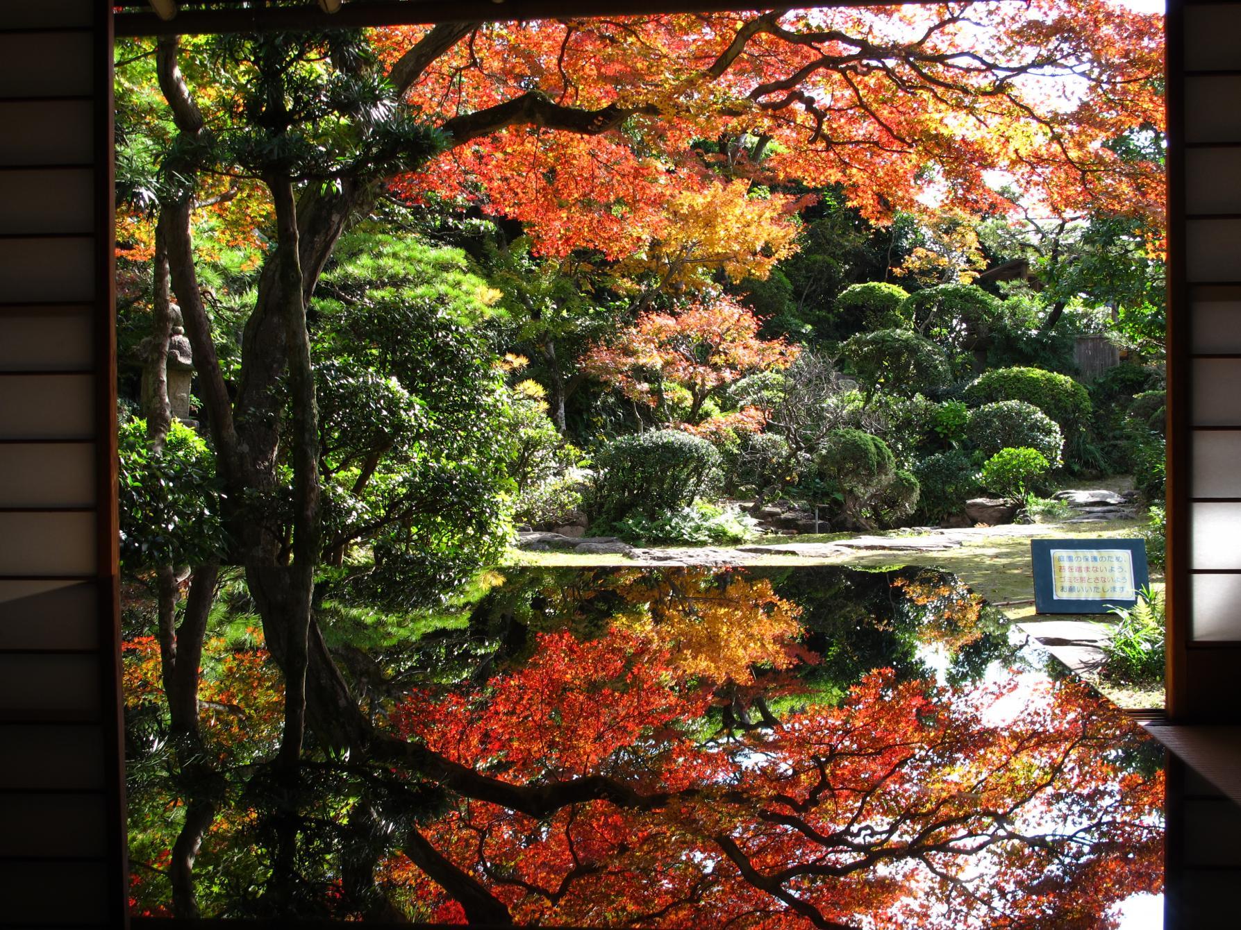 茅葺建物と紅葉の景色に癒される「心田庵」(長崎市)-0