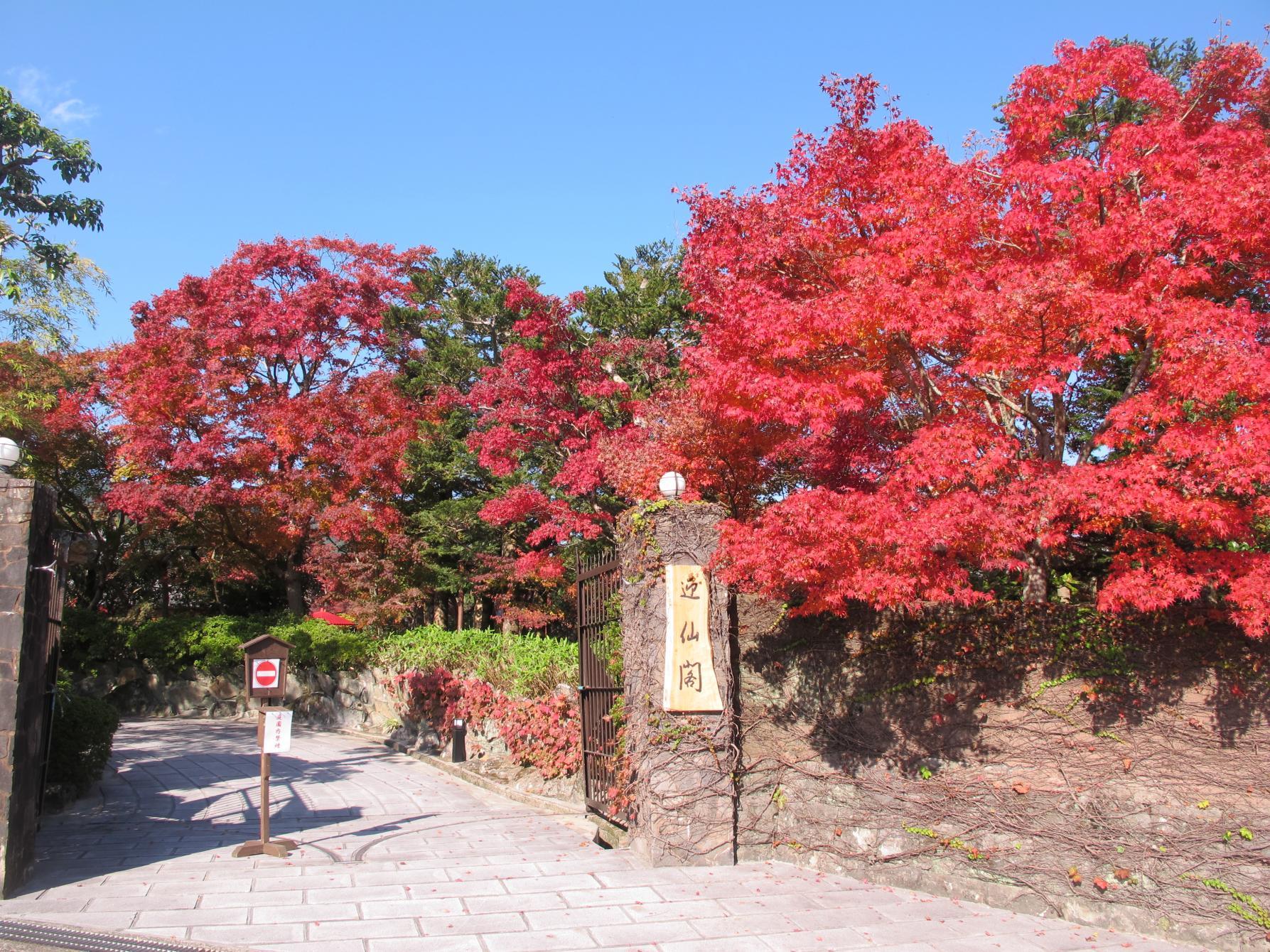 植木の里にある、見事な庭園「迎仙閣」(長崎市)-0