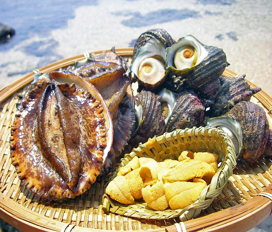 Fresh and Tasty Seafood-0