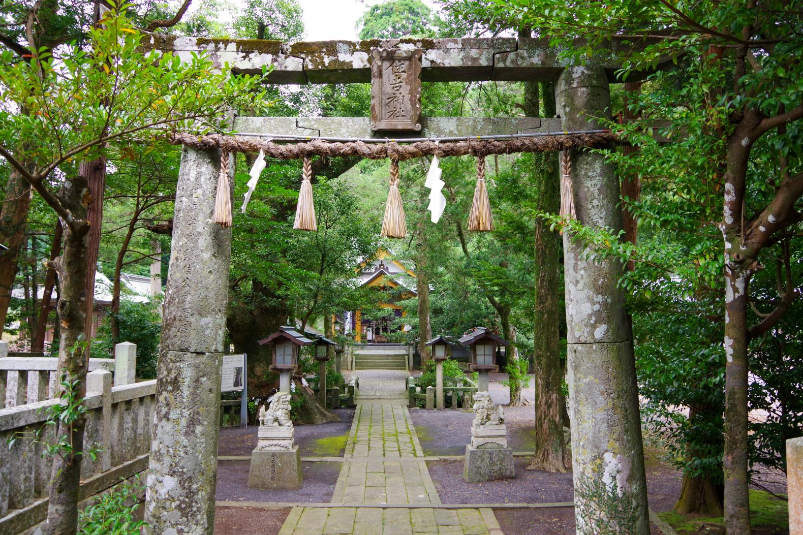 Sumiyoshi Shrine with a Fufu Kusu (Married Couple camphor Tree) That Makes Your Wishes Come True-0