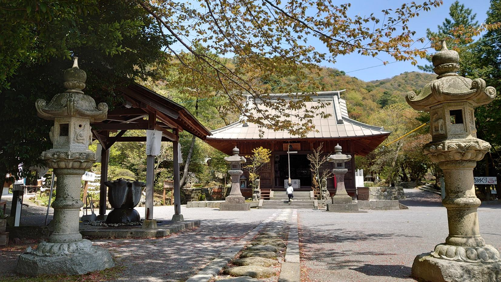 Unzen: Cruising through a Volcanic Peninsula Forest-4