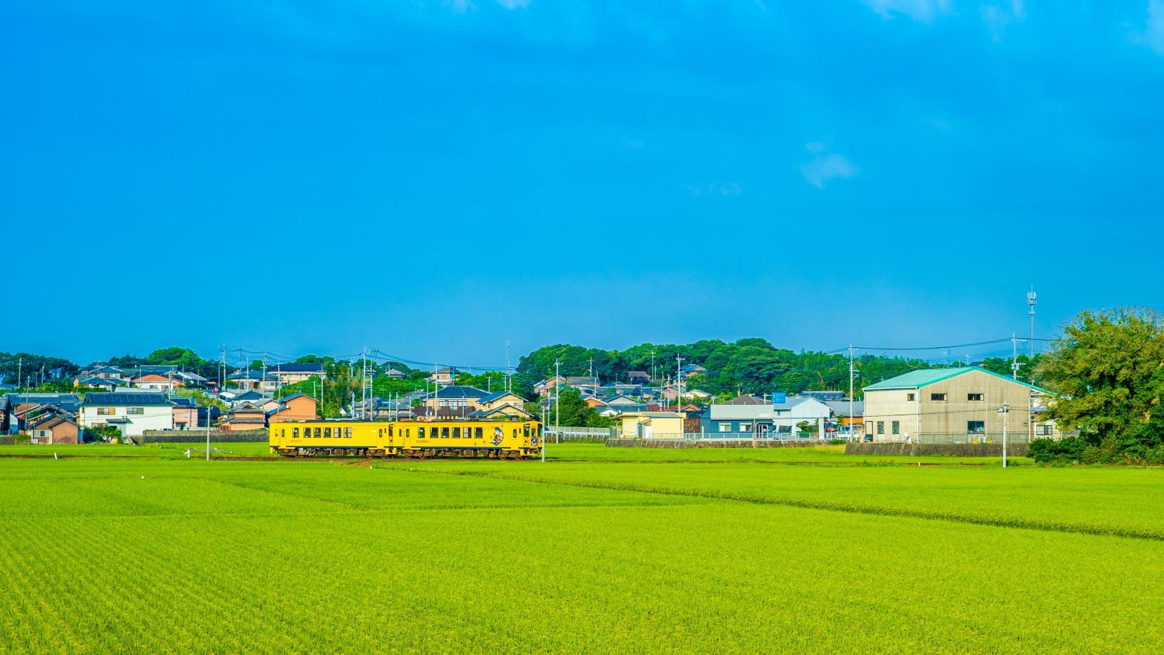 """島原鉄道で行く""""しまばら満喫旅""""-1"""