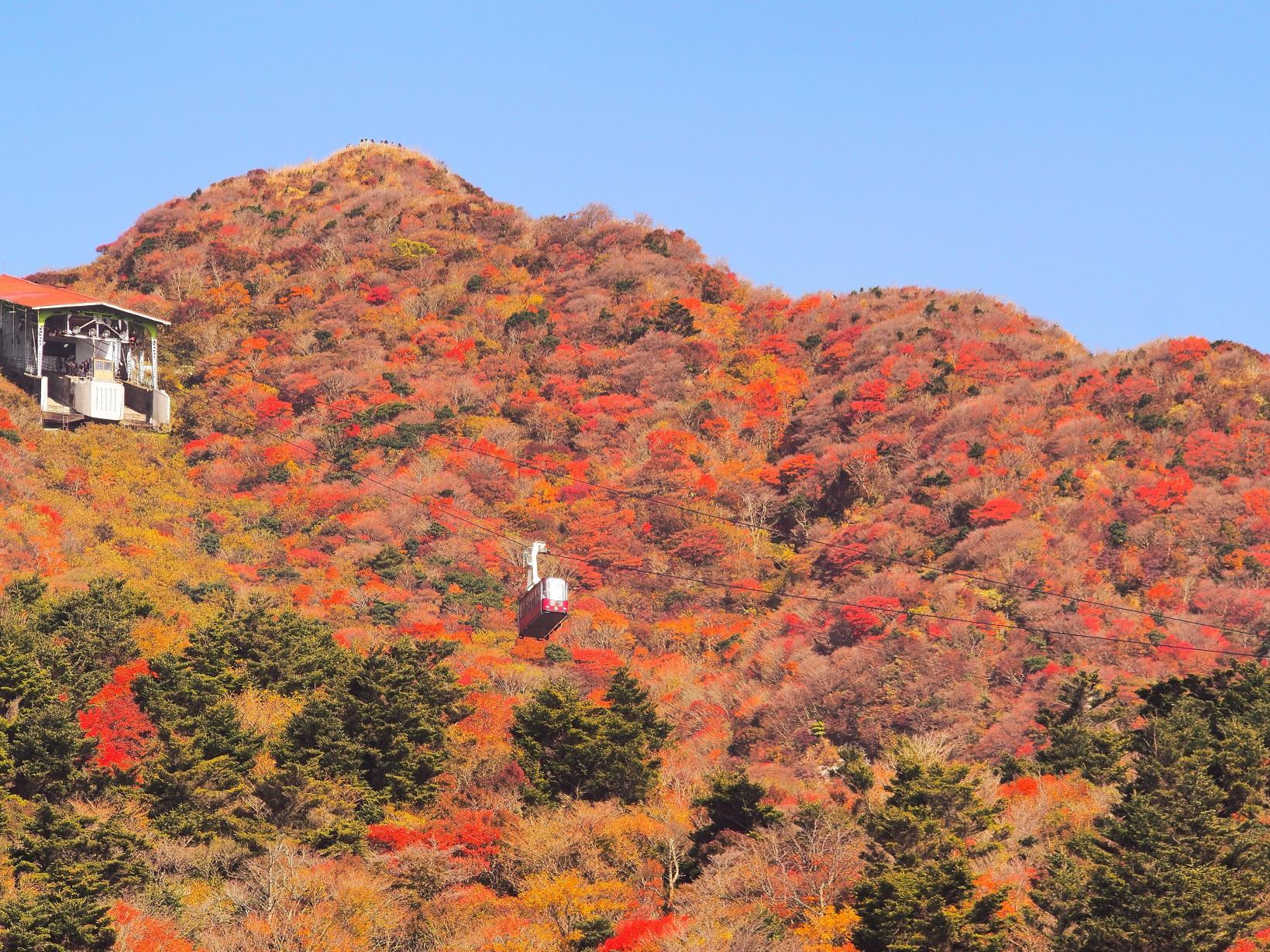 人気の紅葉スポットで秋の絶景を満喫-1