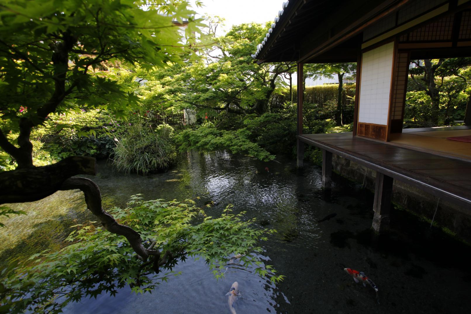 후쿠오카현과 나가사키현 시마바라 반도를 마음껏 즐기는 5일 코스-1