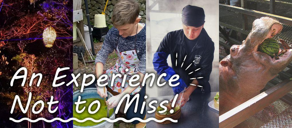 An Experience Not to Miss!-1