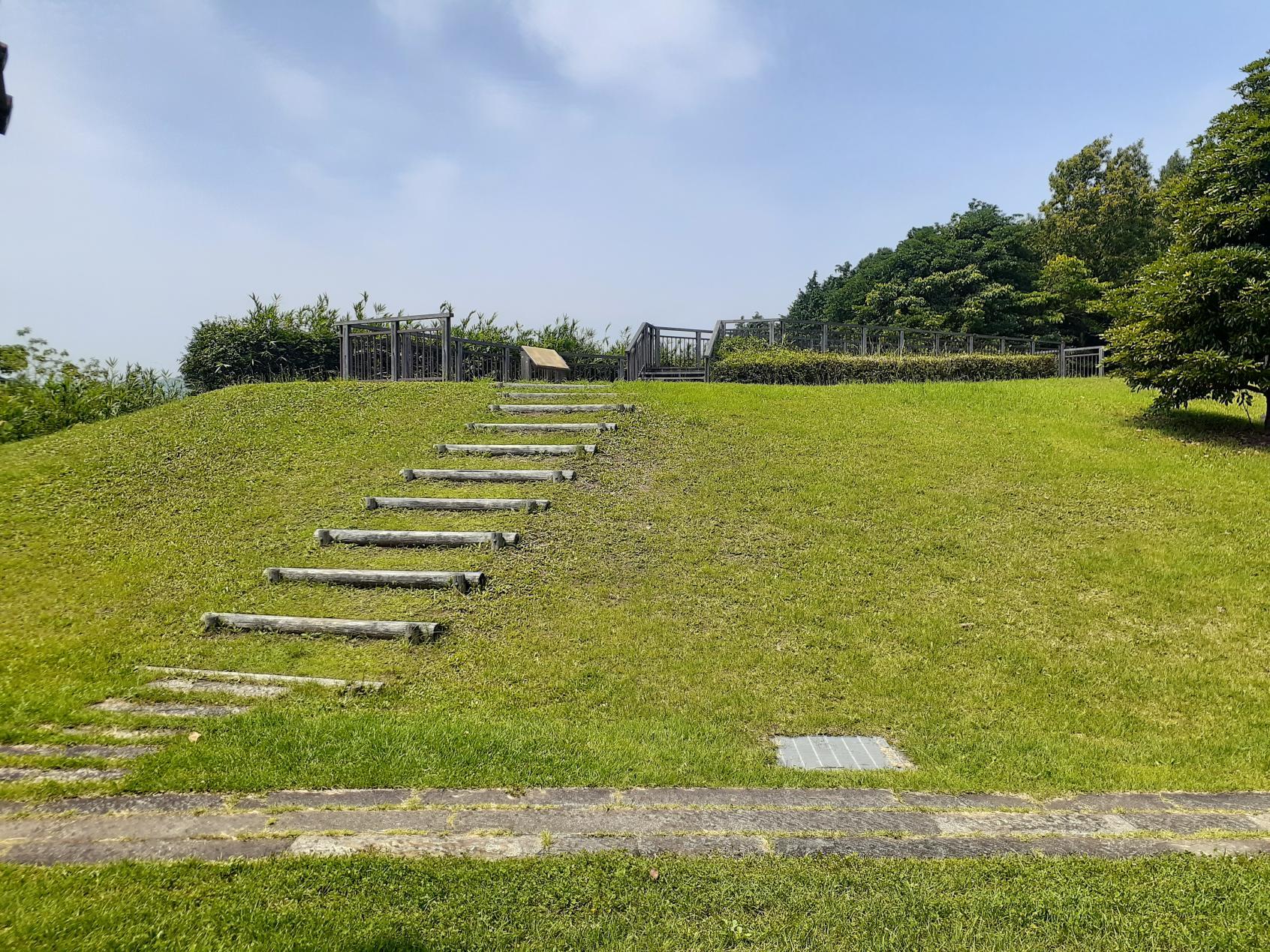 芝のステップ-2