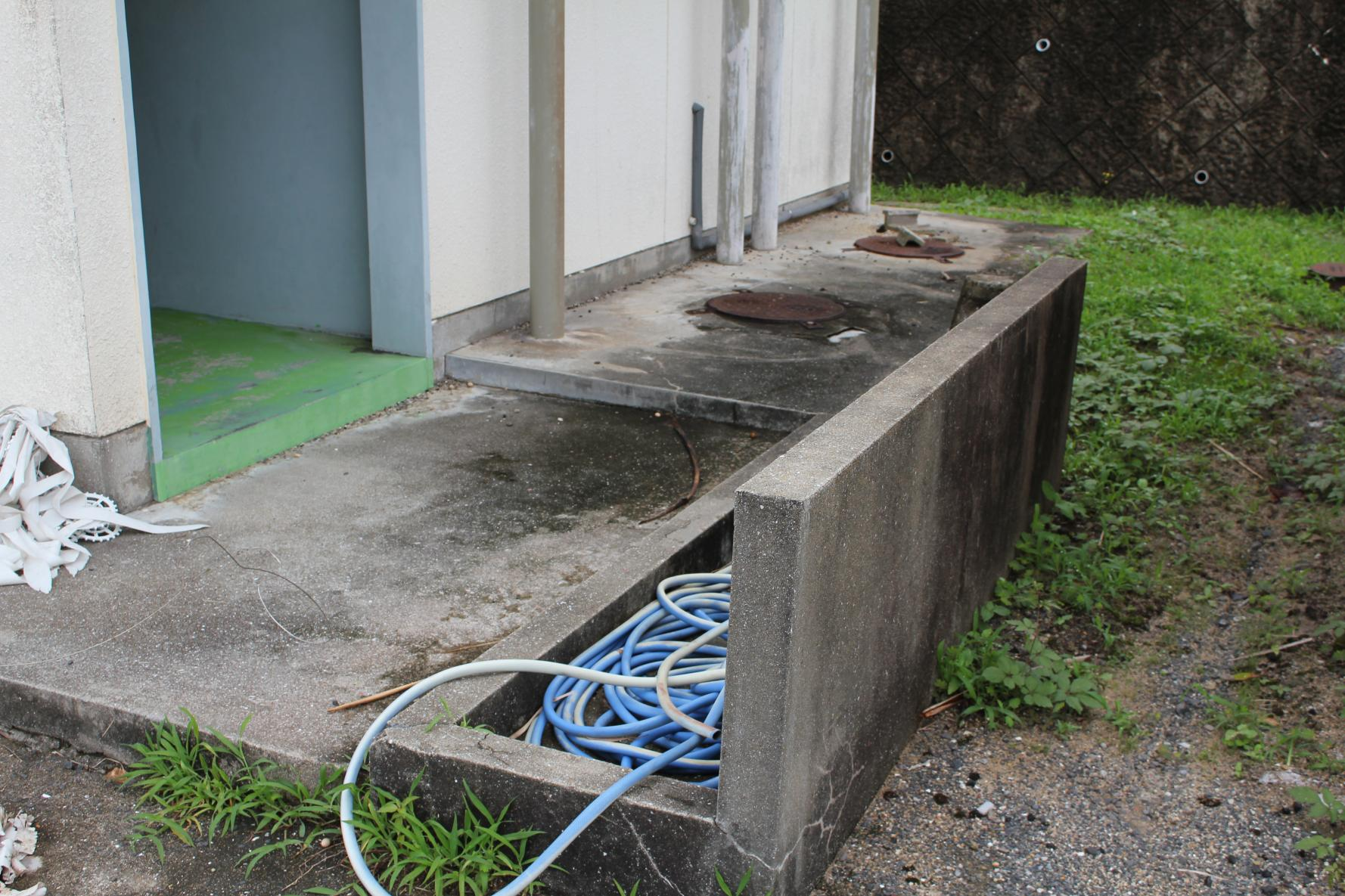 トイレ入口-1