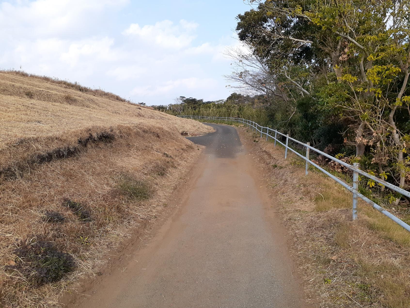 サイクルロードの上り道-3