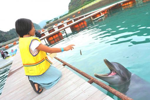 壹岐海豚公園-2
