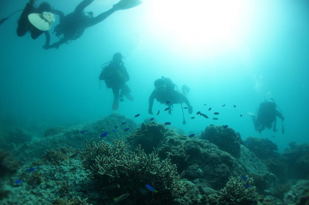 上五島の海中散歩(体験ダイビング)-1