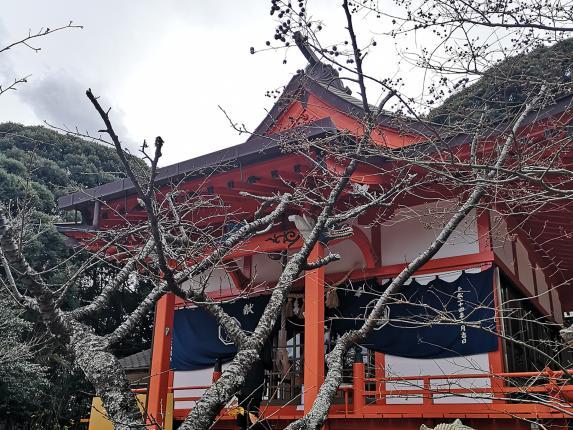 箱崎八幡神社-1