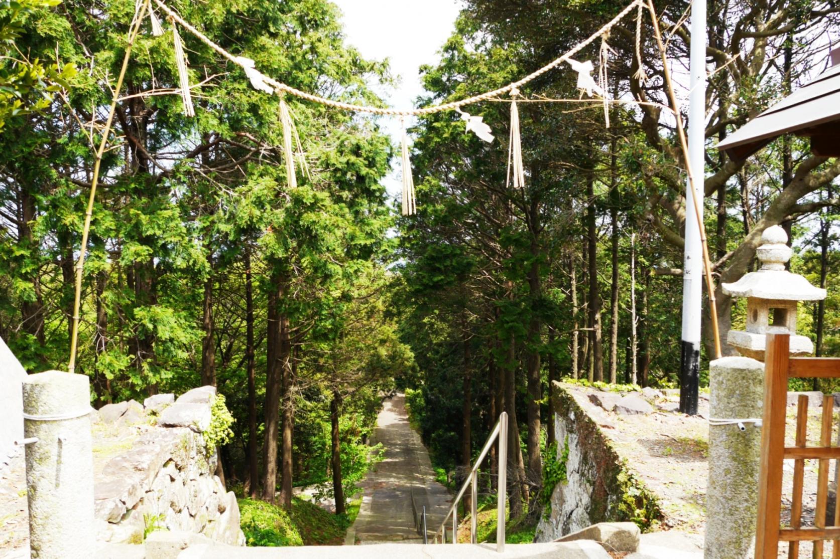 本宮八幡神社-3