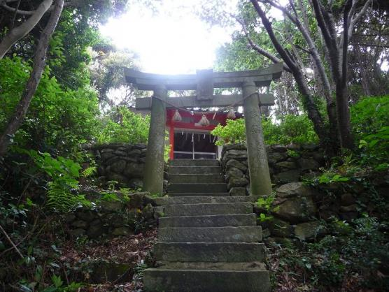 琴平神社-0