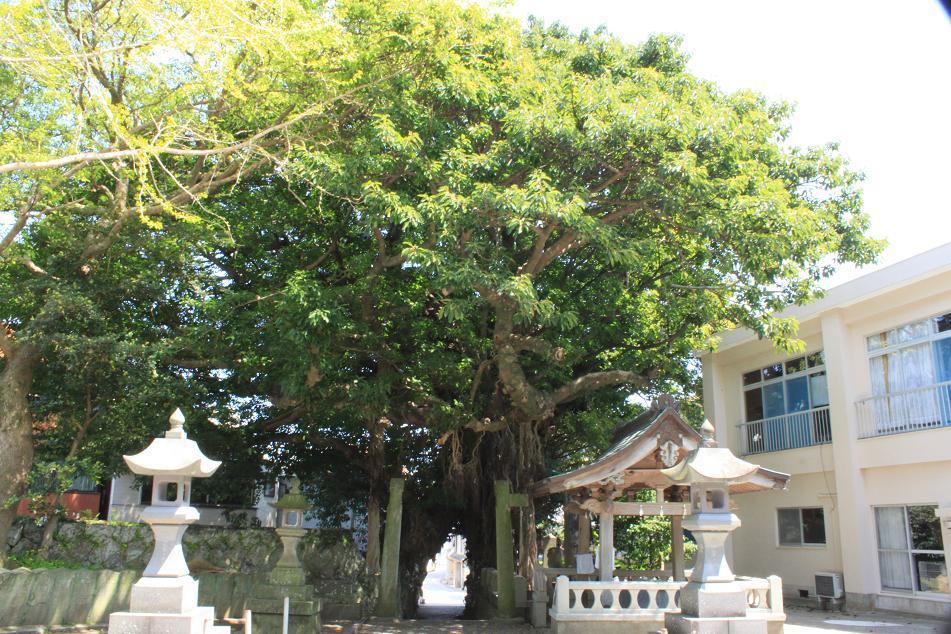 奈良尾神社-8