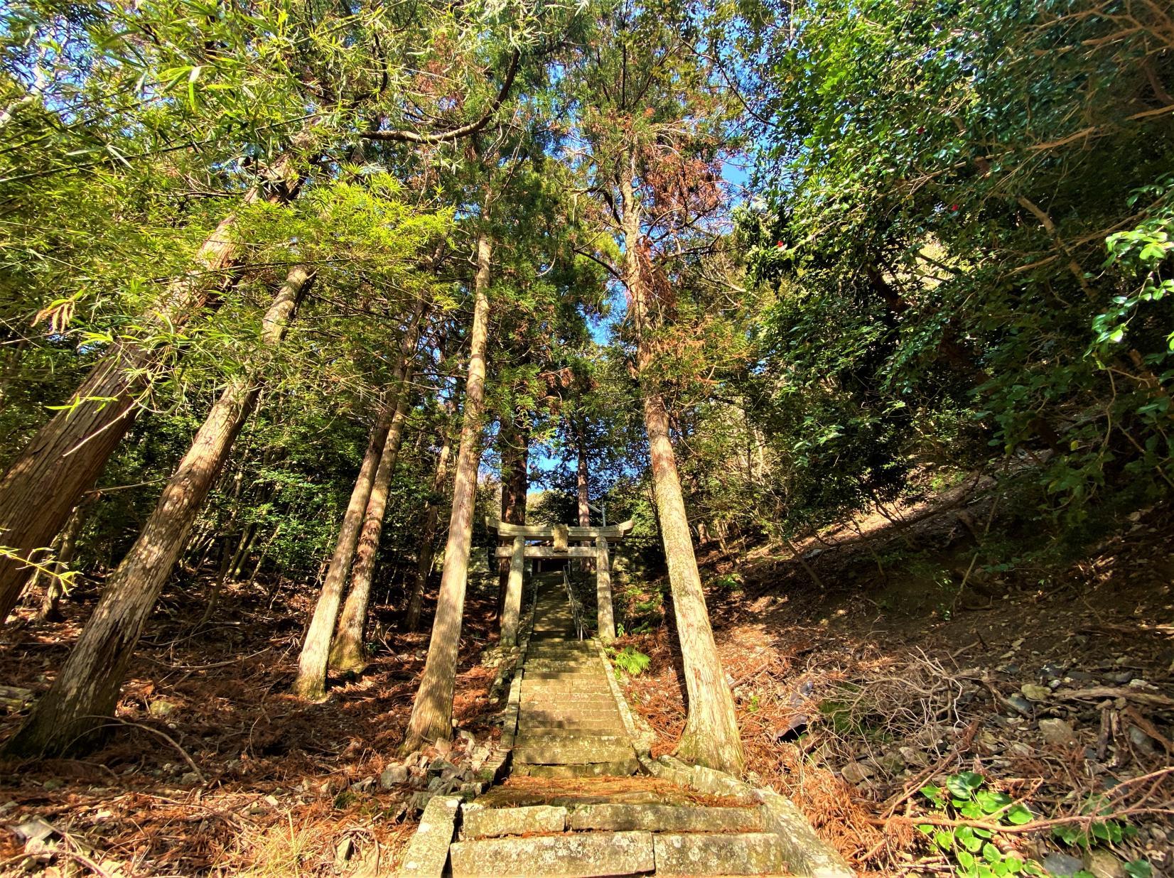 若松神社-2