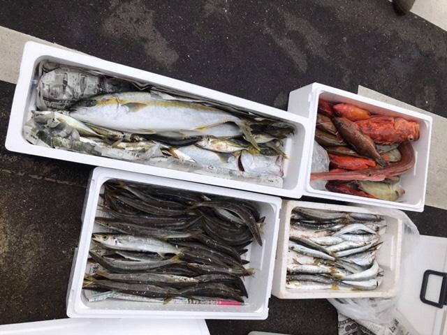 玄界灘!現役漁師と漁業体験-1