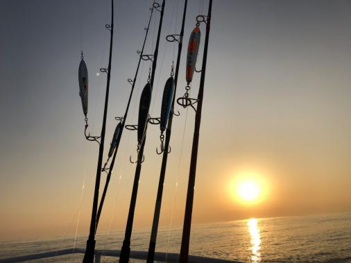 遊漁船 ルアーフィッシング体験-8
