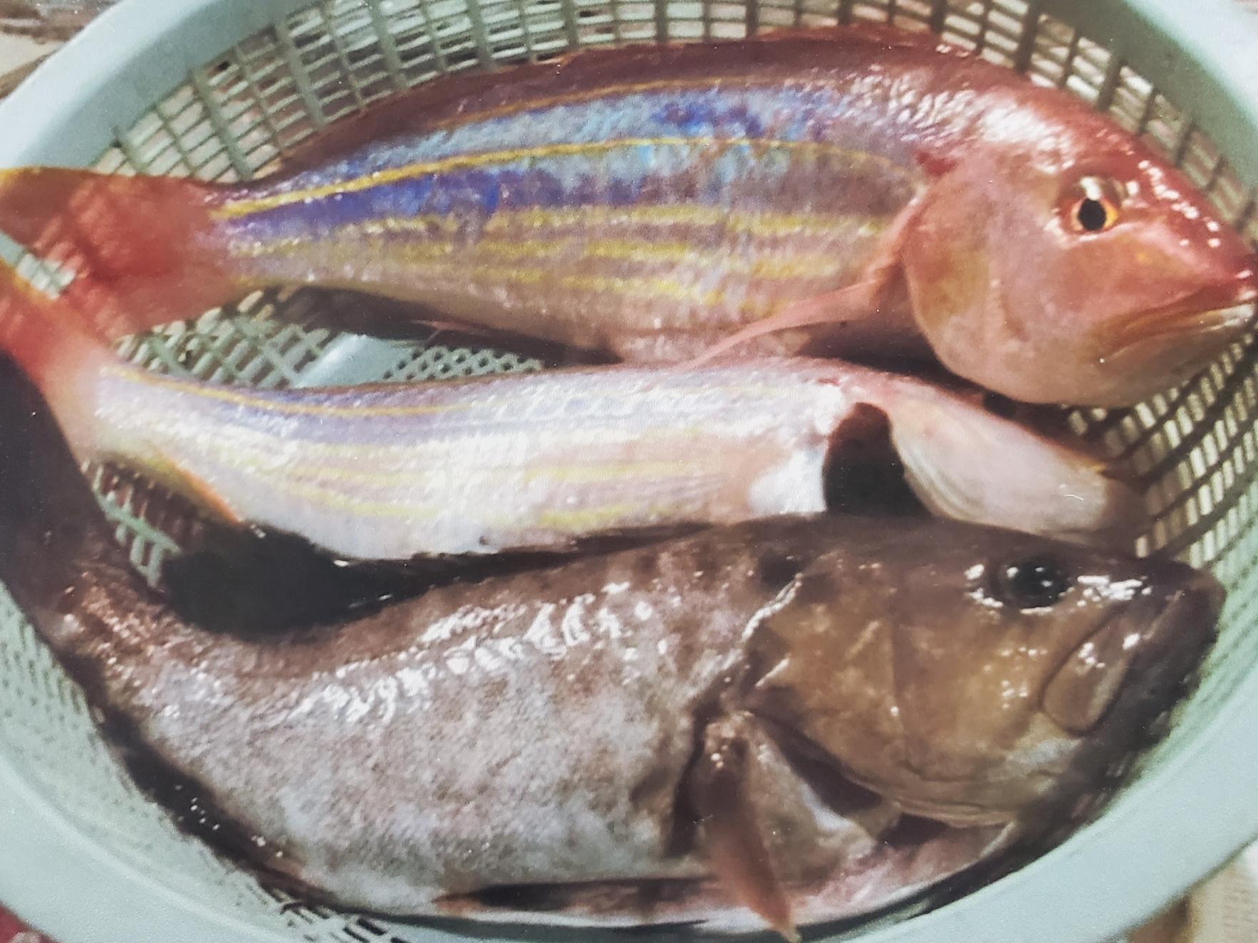 銀杏の宿(郷土料理つくり・そば打ち・釣り体験)-3