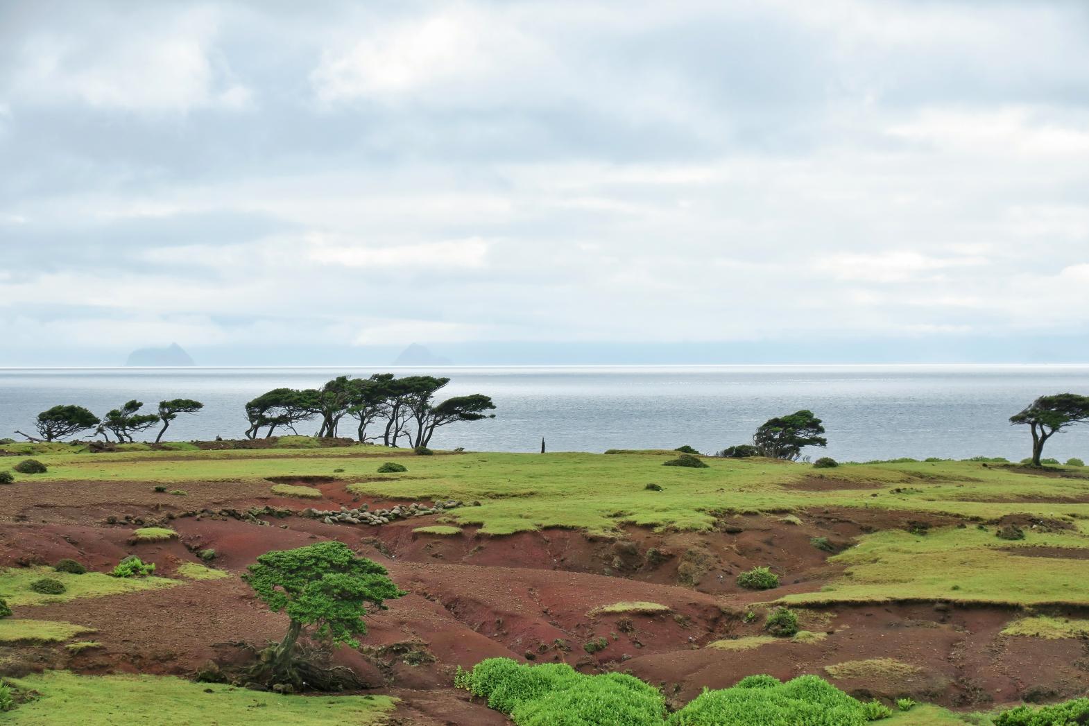 Nozaki Island-1