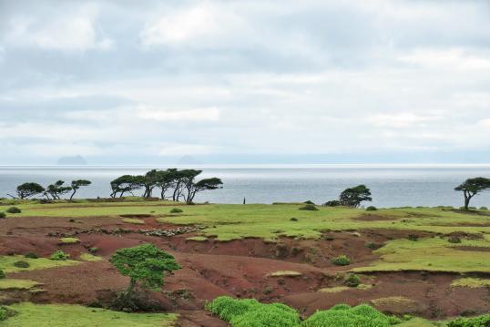 Nozaki Island-0