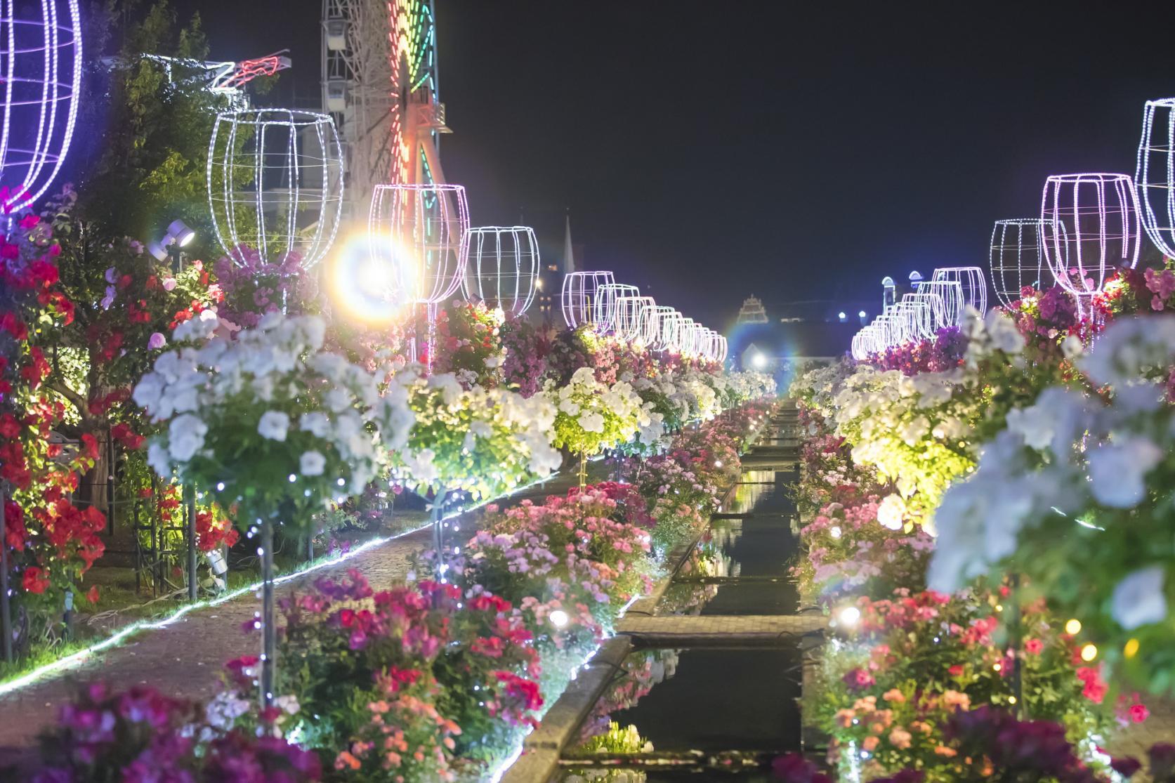 【ハウステンボス】 バラ祭-3