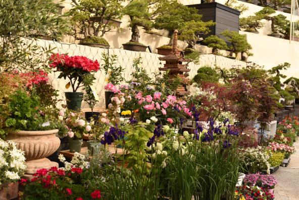 三原庭園-6