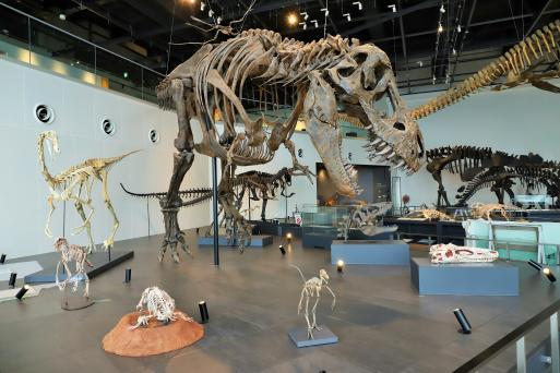 長崎市恐竜博物館-0