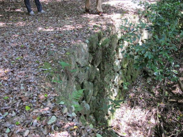 The Ruins of Kaneda Castle-2