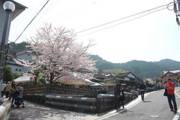 【中止】陶郷中尾山 桜陶祭-5